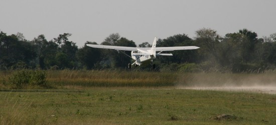 Okavango Delta Fly In Safaris